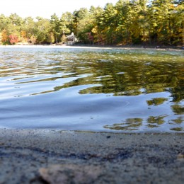 Walden Pond offers a haven to busy Bostonians