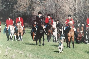 Foxhunting: The exhilaration of unrestrained riding